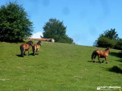 Urbasa-Andía;Aizkorri-Aratz;Aralar; buscar amigos madrid material para senderismo caminar por madri